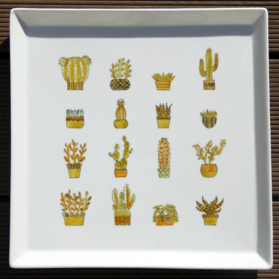 cactus-plantes grasses-sur-plat-porcelaine