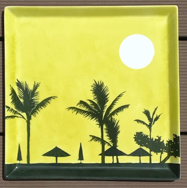 plat-carre-sous-les-tropiques